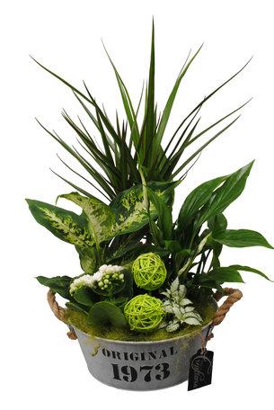 Arrangement Basic creatie in zink groen - Hoogte 50 cm - Dieffenbachia, Dracaena, Spathiphyllum,Fittonia en een Kalanchoe