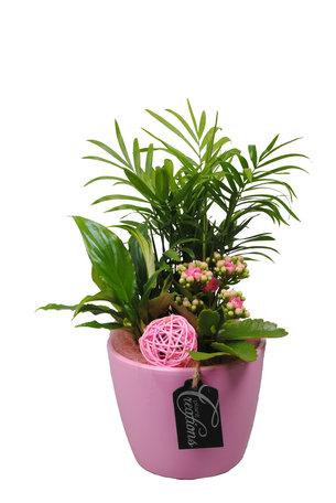 Arrangement Basic creatie - Hoogte: 35 cm - in keramiek roze